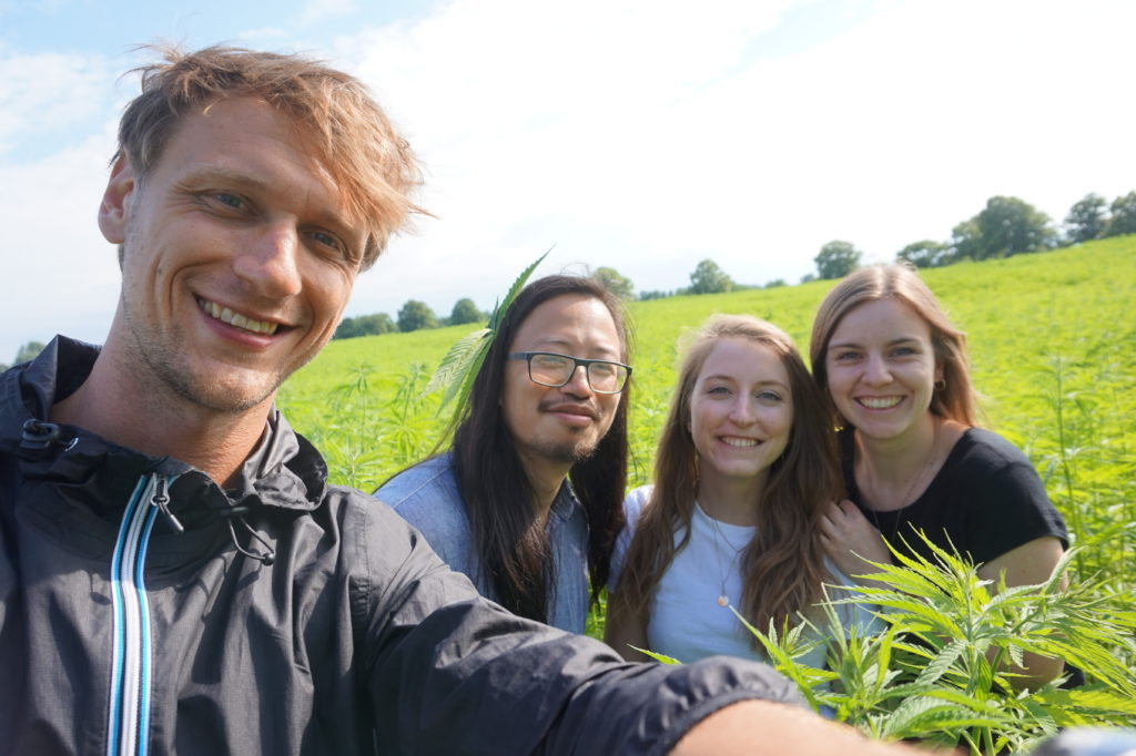 Team of ChillChoc in a Hemp Plantage